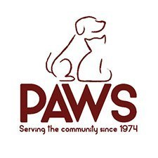 PAWS Square 2020 Maroon 225