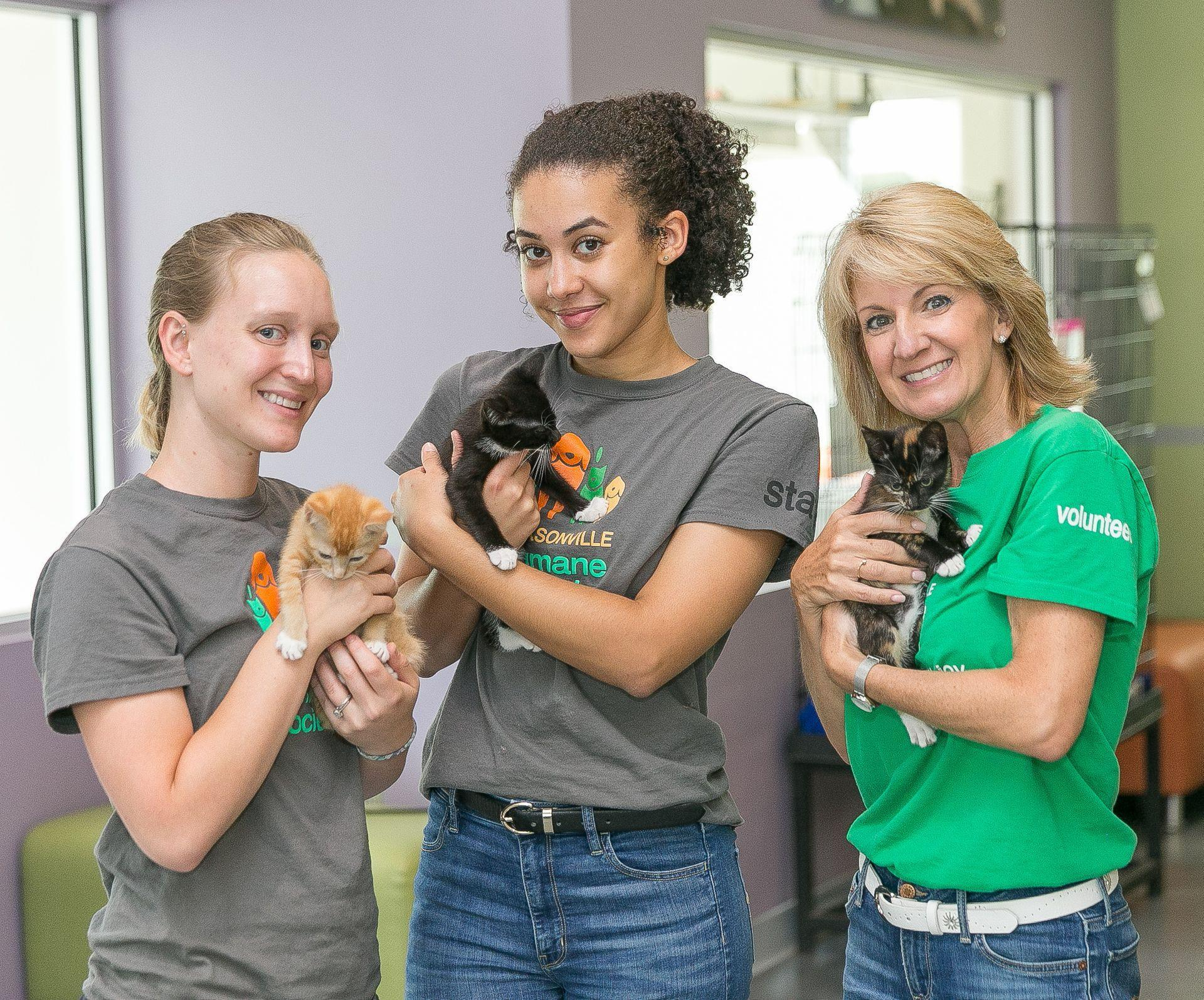 Jacksonville Humane Society-Kitten Volunteers
