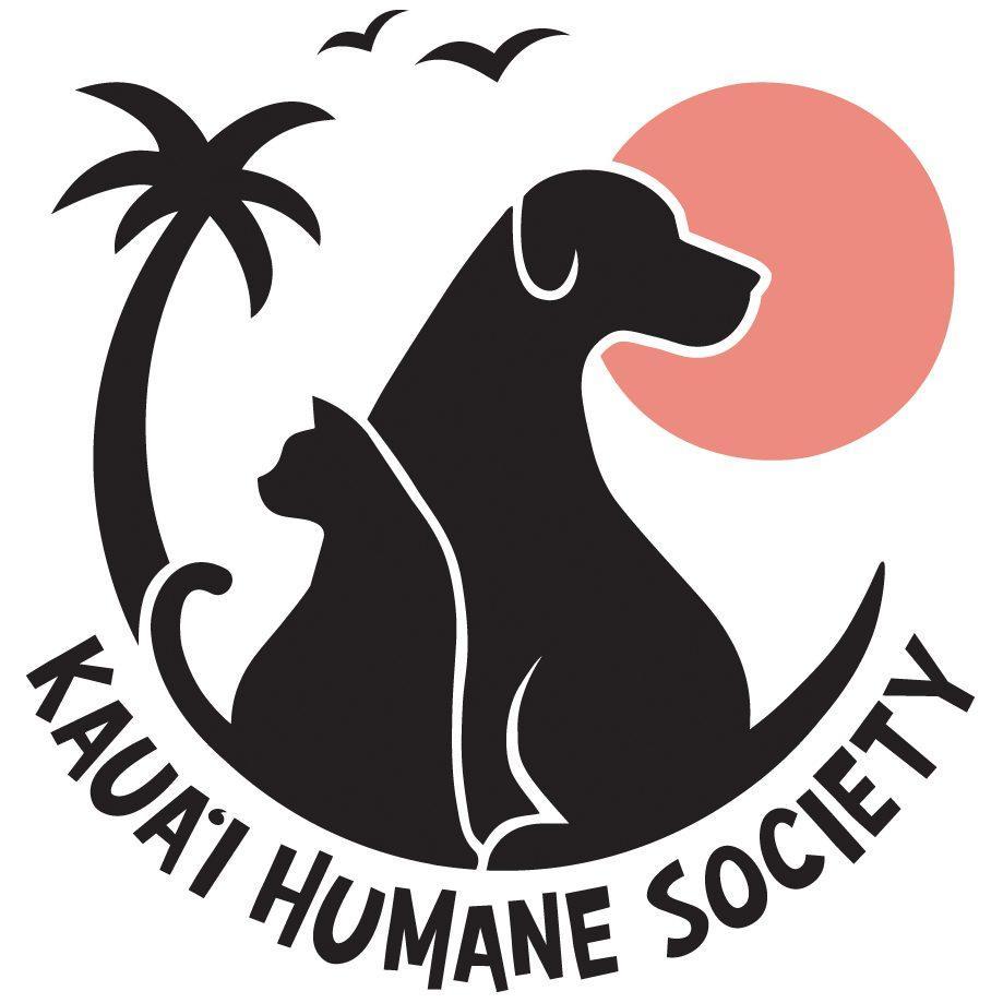 KSH Primary Logo Pink RGB 1