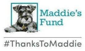 Maddies Fund 600x400 1 210628 144737