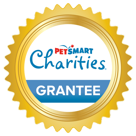 PCI Grantee Web Badge DIGITAL